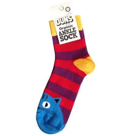 Duns Sock Cat