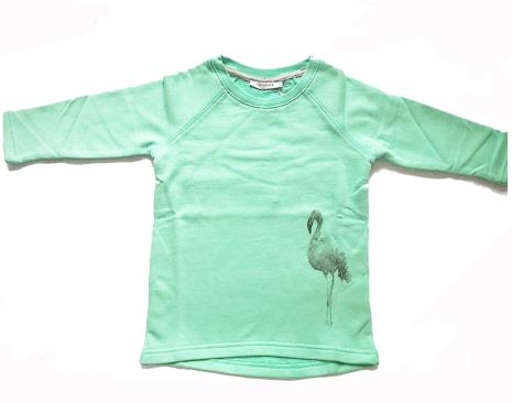 One We Like Flash Flamingo